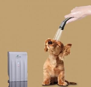 Memaido Pet Shower - . o3 shower for dog cat pet